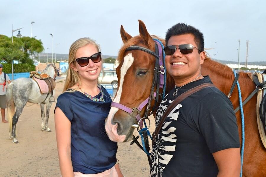 Horse selfie!