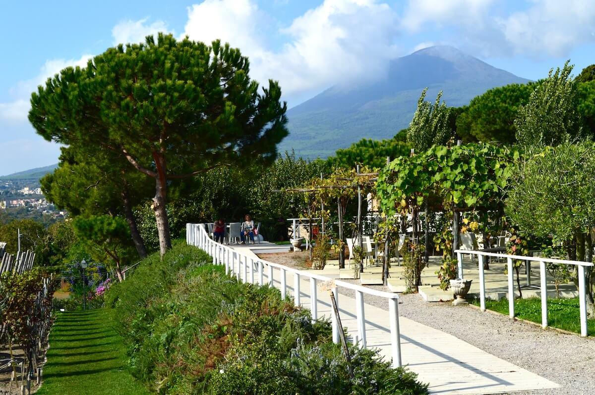 Majestic Mt. Vesuvius
