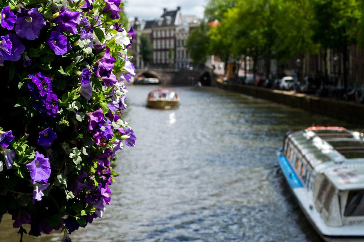 Flowers and boats at Amsterdam